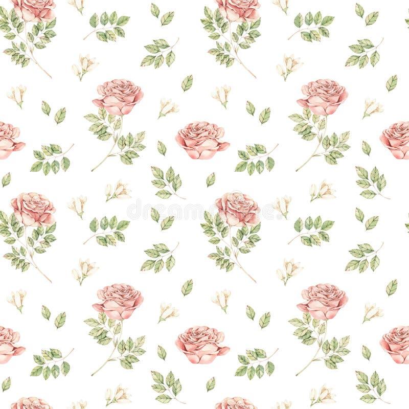Βοτανική απεικόνιση Watercolor Άνευ ραφής σχέδιο βοτανικής με τα άγρια τριαντάφυλλα Floral άνθος Τελειοποιήστε για τη συσκευασία, στοκ εικόνες