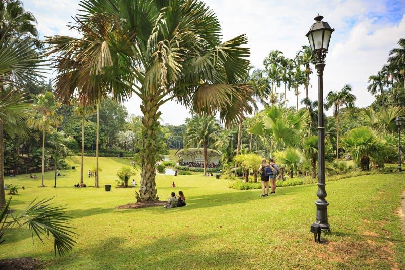 Βοτανικοί κήποι της Σιγκαπούρης στοκ φωτογραφία