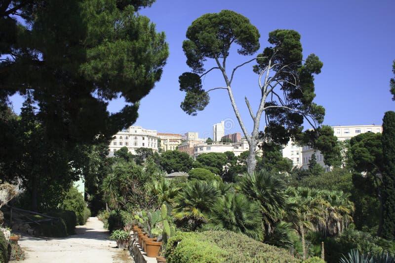 βοτανικοί κήποι του Κάλι& στοκ εικόνες