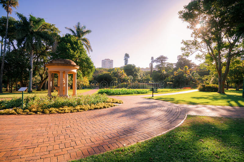 βοτανικοί κήποι του Ντάρμπαν στοκ φωτογραφία με δικαίωμα ελεύθερης χρήσης