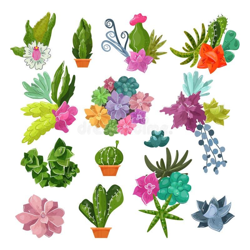 Βοτανικοί σε δοχείο κάκτοι κινούμενων σχεδίων κάκτων διανυσματικοί με τα τροπικά λουλούδια και βοτανική φυτών ανθίσματος την κακτ ελεύθερη απεικόνιση δικαιώματος