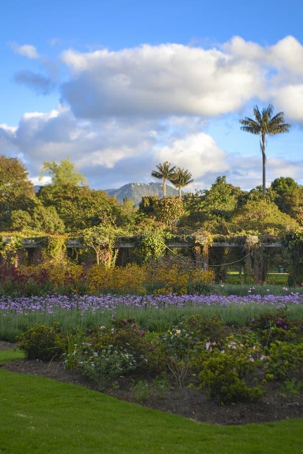 Βοτανικός κήπος και ουρανός στοκ φωτογραφία με δικαίωμα ελεύθερης χρήσης