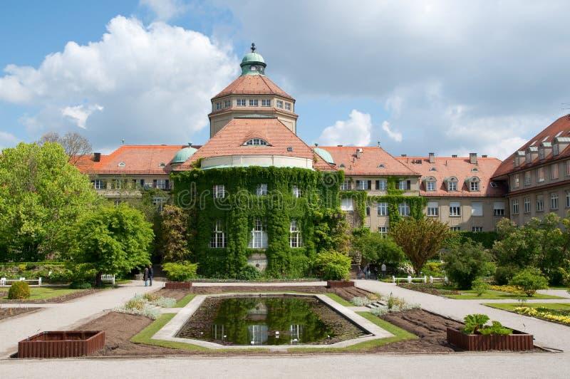 βοτανικός κήπος Μόναχο στοκ φωτογραφίες με δικαίωμα ελεύθερης χρήσης