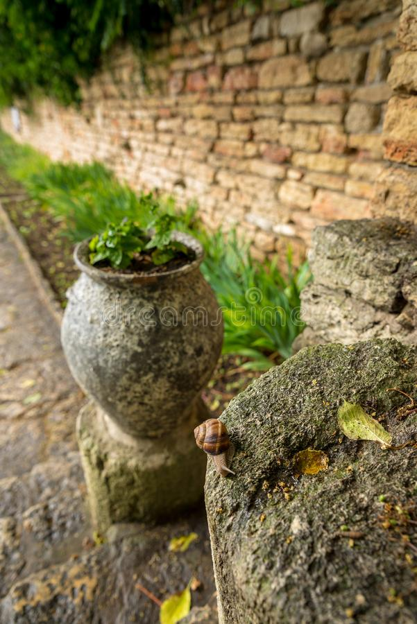 Βοτανικός κήπος στο παλάτι Balchik στη Βουλγαρία στοκ εικόνα με δικαίωμα ελεύθερης χρήσης