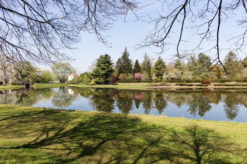 Βοτανικός κήπος χαλάρωσης με τη λίμνη και το πράσινο τοπίο στοκ εικόνες με δικαίωμα ελεύθερης χρήσης