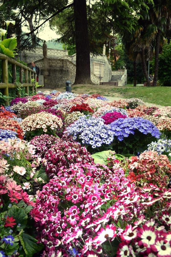 βοτανικός κήπος στοκ φωτογραφία με δικαίωμα ελεύθερης χρήσης