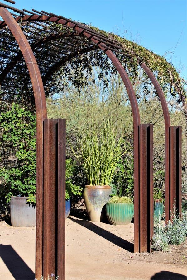 Βοτανικός κήπος Phoenix Αριζόνα ερήμων στοκ φωτογραφία με δικαίωμα ελεύθερης χρήσης