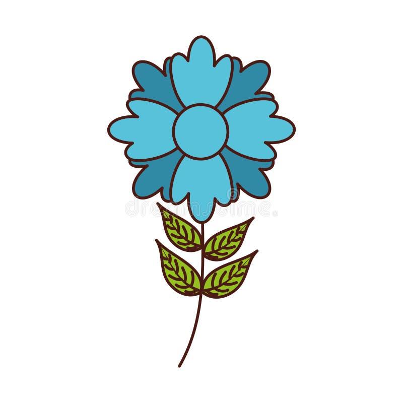Βοτανικός μίσχος φύλλων πετάλων διακοσμήσεων φυτών λουλουδιών διανυσματική απεικόνιση