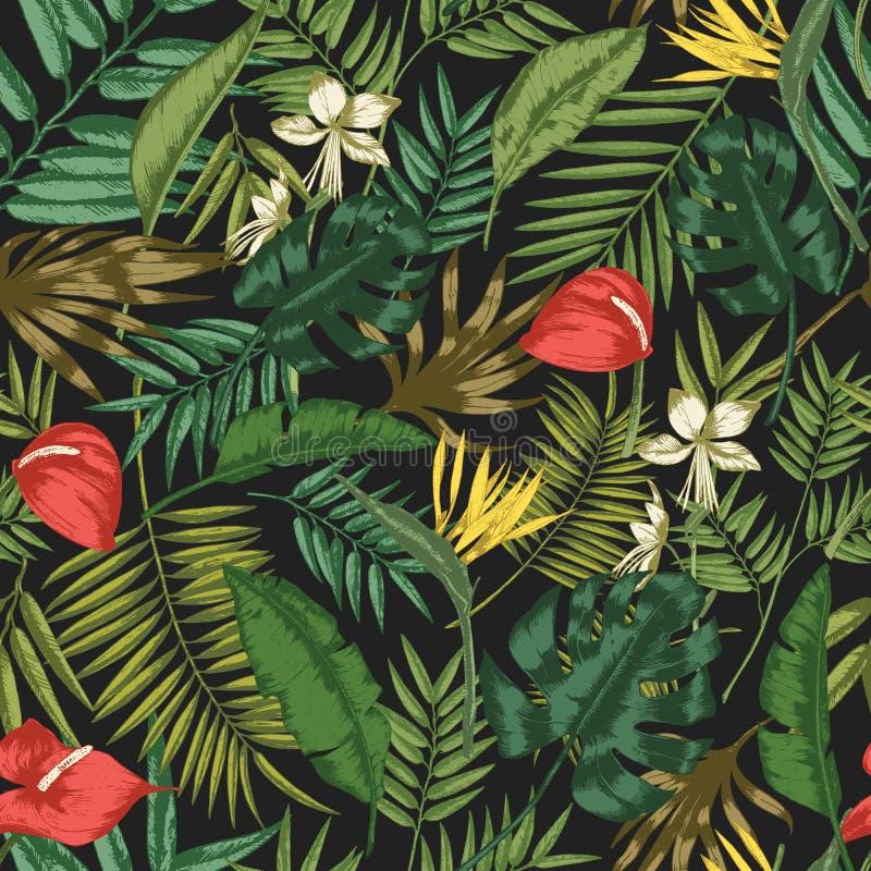 Βοτανικό άνευ ραφής σχέδιο με το φύλλωμα των εξωτικών εγκαταστάσεων ζουγκλών στο μαύρο υπόβαθρο Σκηνικό με τα φύλλα τροπικού απεικόνιση αποθεμάτων