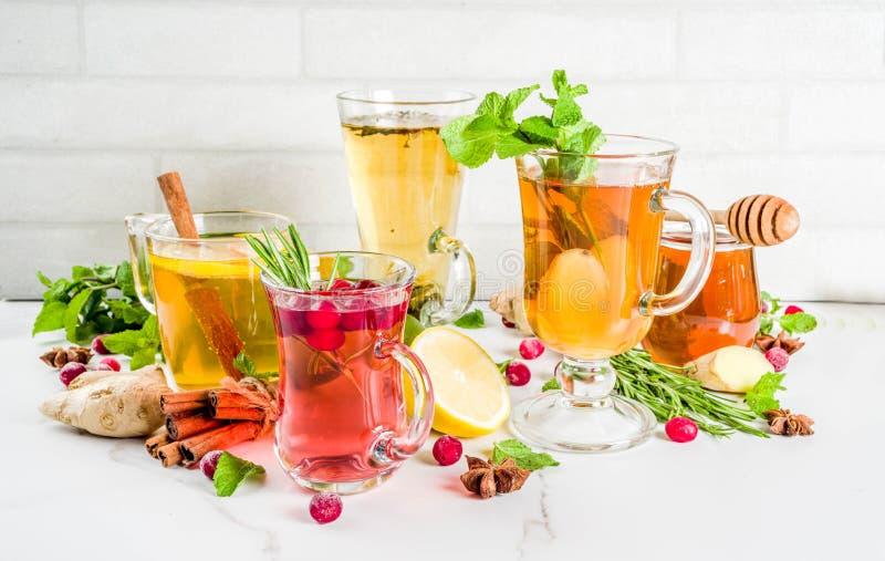 Βοτανικό τσάι διάφορου χειμώνα φθινοπώρου στοκ εικόνα