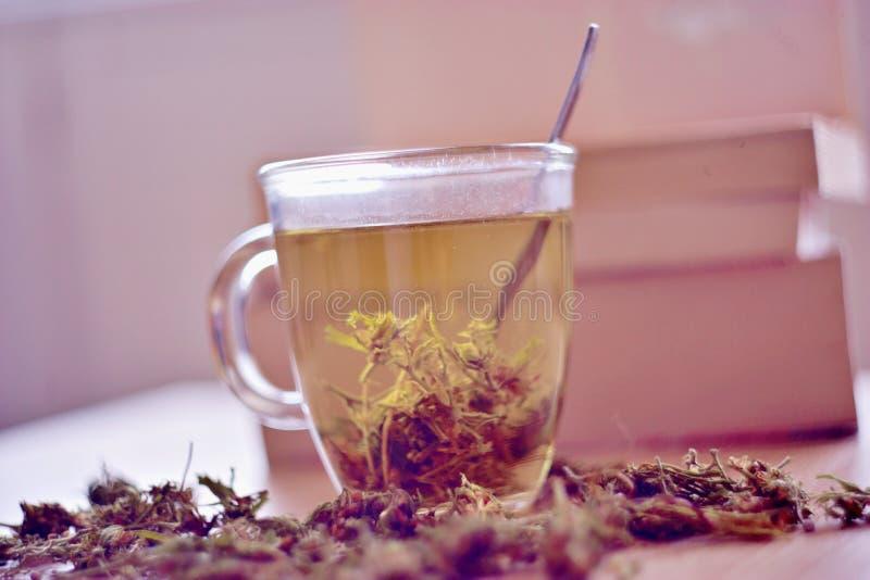 Βοτανικό τσάι καννάβεων στοκ φωτογραφίες με δικαίωμα ελεύθερης χρήσης