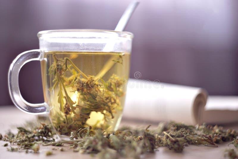 Βοτανικό τσάι καννάβεων στοκ εικόνες