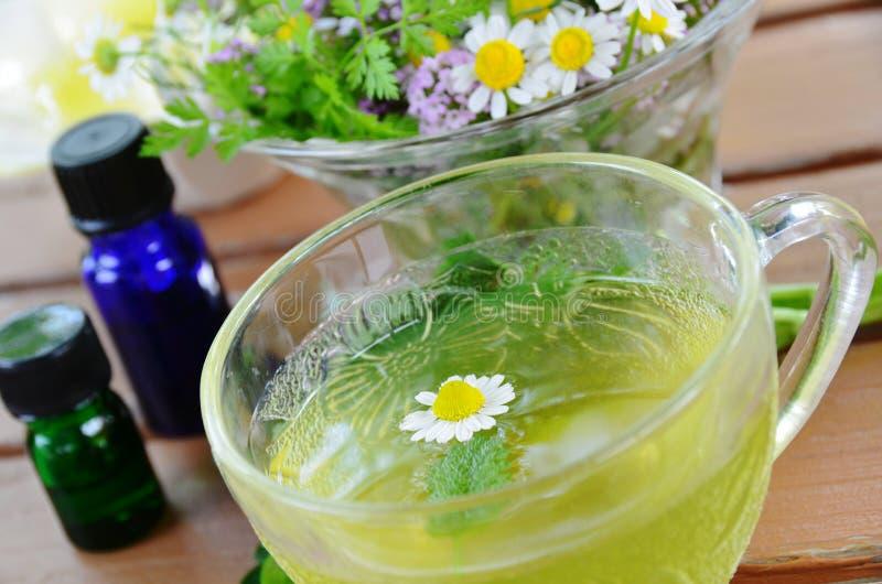 Βοτανικό τσάι με τα ουσιαστικά πετρέλαια στοκ εικόνες με δικαίωμα ελεύθερης χρήσης