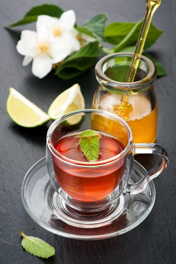 Βοτανικό τσάι με τη μέντα, jasmine τα λουλούδια και το μέλι Έννοια της υγείας στοκ φωτογραφία