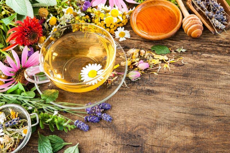 Βοτανικό τσάι με το μέλι στοκ εικόνα