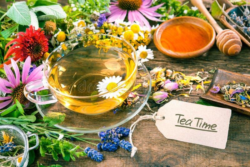 Βοτανικό τσάι με το μέλι στοκ εικόνες