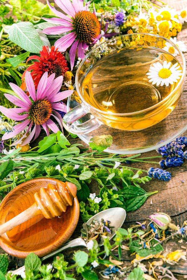 Βοτανικό τσάι με το μέλι στοκ φωτογραφία με δικαίωμα ελεύθερης χρήσης