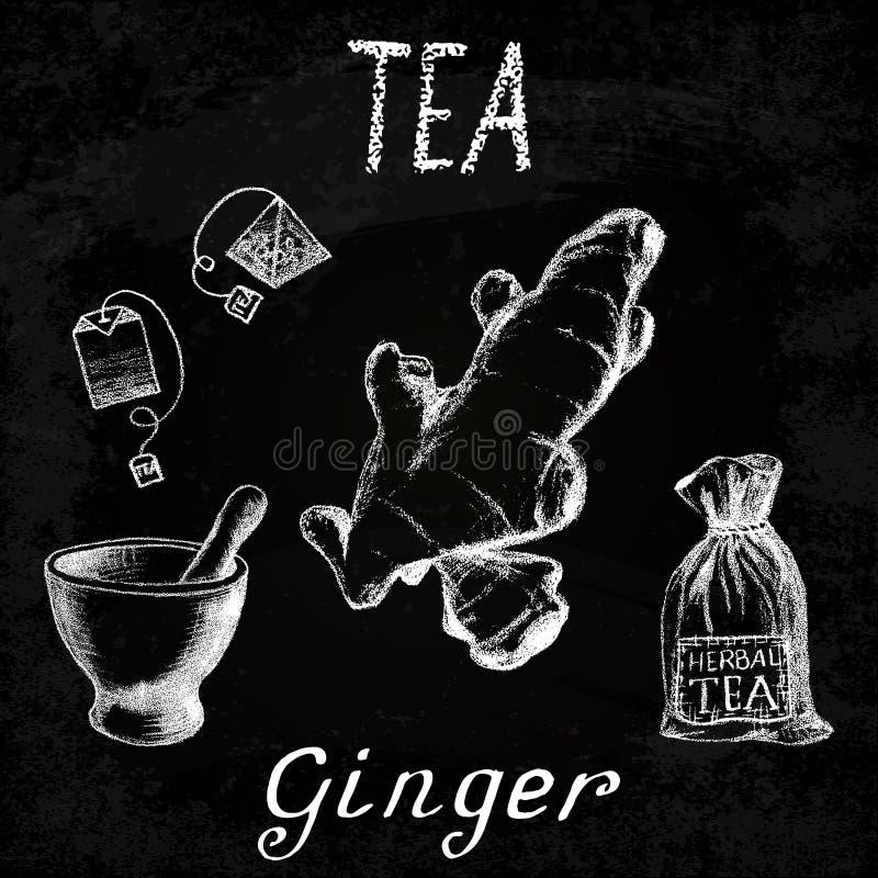 Βοτανικό τσάι πιπεροριζών Σύνολο πινάκων κιμωλίας στοιχείων ελεύθερη απεικόνιση δικαιώματος