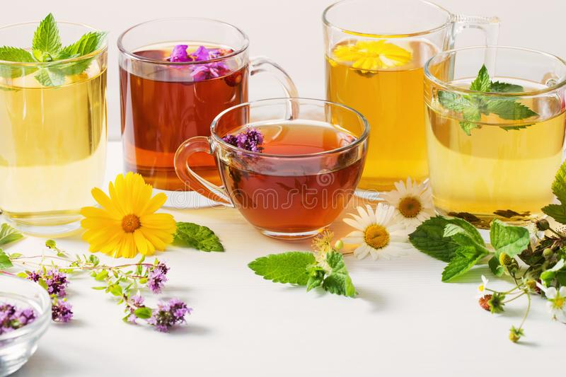 Βοτανικό τσάι στα φλυτζάνια σε ένα άσπρο υπόβαθρο στοκ φωτογραφία με δικαίωμα ελεύθερης χρήσης