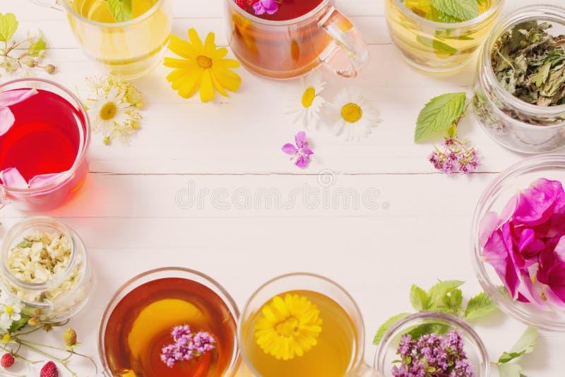 Βοτανικό τσάι στα φλυτζάνια σε ένα άσπρο υπόβαθρο στοκ φωτογραφίες με δικαίωμα ελεύθερης χρήσης