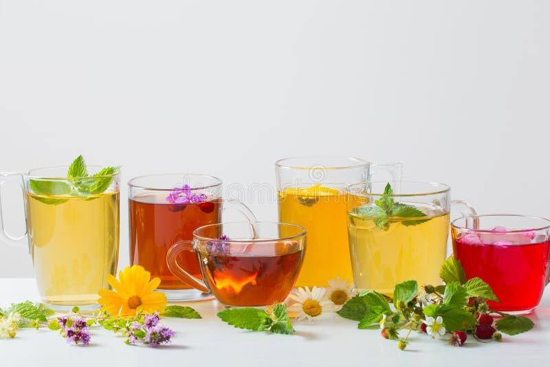 Βοτανικό τσάι στα φλυτζάνια στο άσπρο υπόβαθρο στοκ φωτογραφία με δικαίωμα ελεύθερης χρήσης