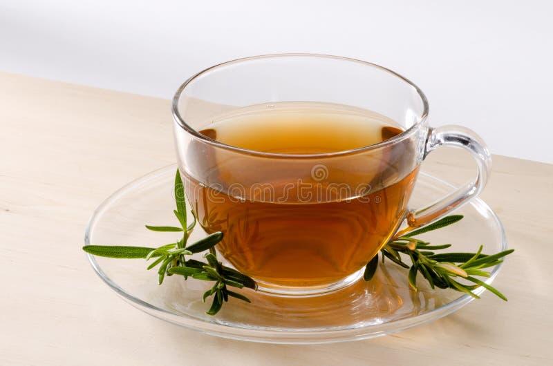 Βοτανικό τσάι της Rosemary στοκ φωτογραφία με δικαίωμα ελεύθερης χρήσης