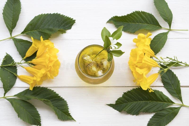Βοτανικό υγιές νερό κοκτέιλ λουλουδιών χρυσάνθεμων ποτών κρύο στοκ φωτογραφία