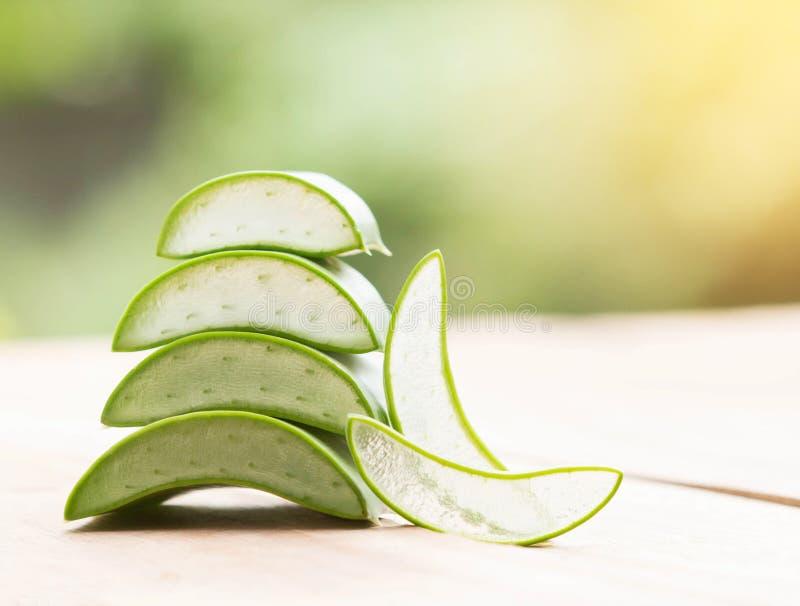 Βοτανικό Aloe Βέρα στοκ εικόνες