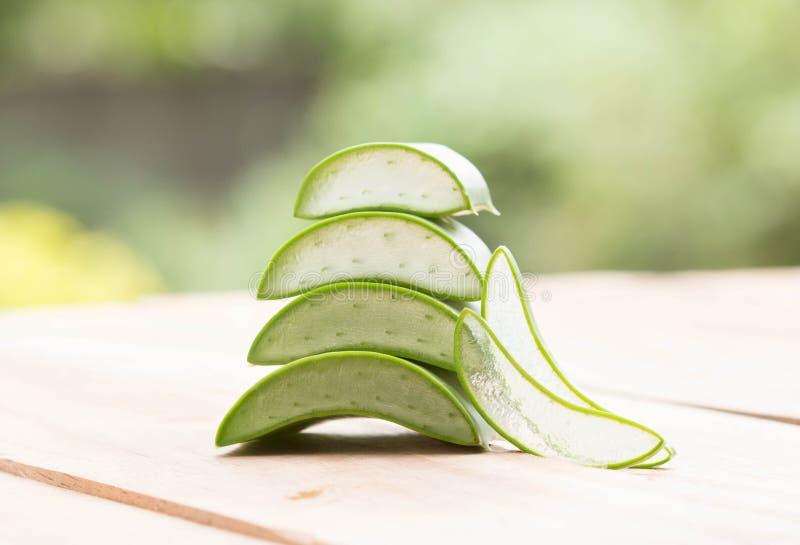 Βοτανικό Aloe στοκ εικόνες