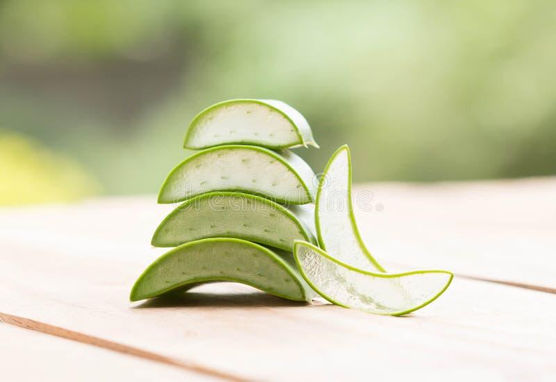 Βοτανικό Aloe στοκ φωτογραφία με δικαίωμα ελεύθερης χρήσης