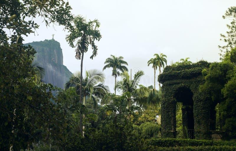 βοτανικό janeiro Ρίο de garden στοκ φωτογραφία