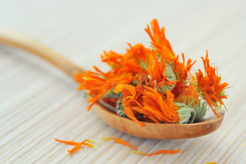 βοτανικό marigold τσάι στοκ εικόνες