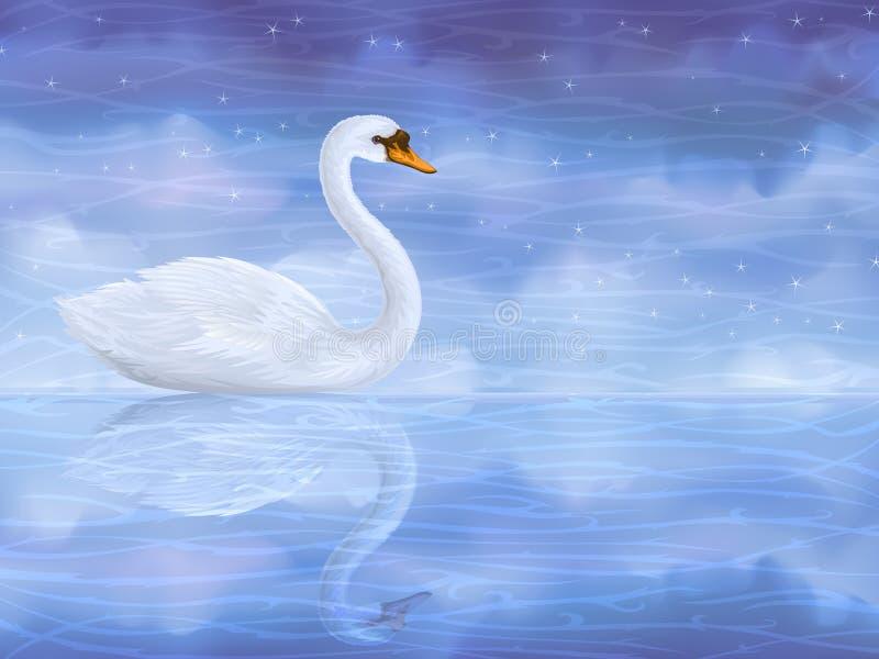 βουβό λευκό κύκνων διανυσματική απεικόνιση