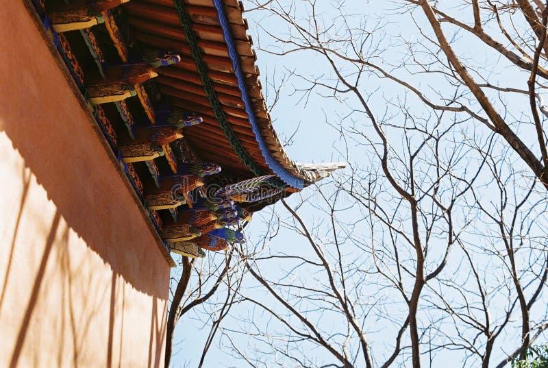 Βουδιστικός ναός ραχών στοκ φωτογραφίες