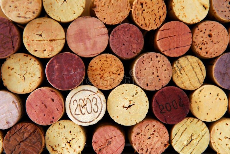 βουλώνει το κρασί στοκ εικόνες