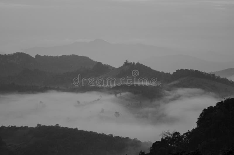 Βουνά, δέντρα και ομίχλη, όμορφο τοπίο στοκ εικόνες