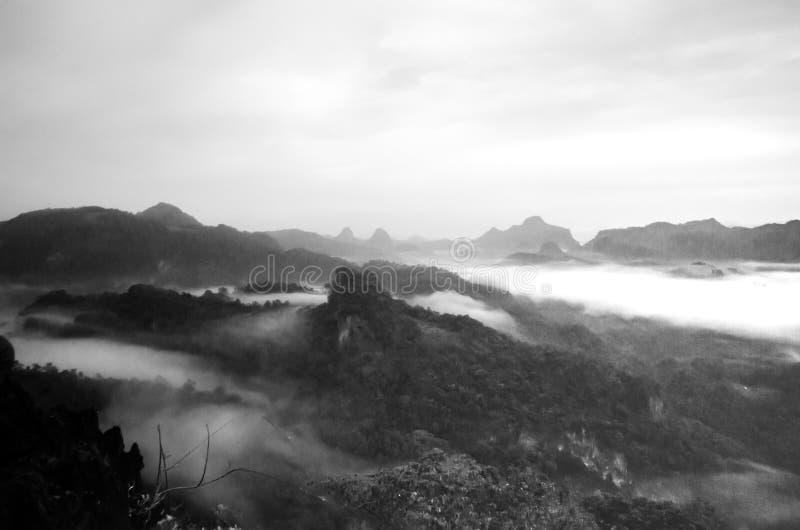 Βουνά, δέντρα και ομίχλη, όμορφο τοπίο στοκ φωτογραφίες
