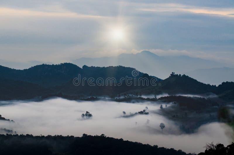 Βουνά, δέντρα και ομίχλη, όμορφο τοπίο στοκ εικόνα