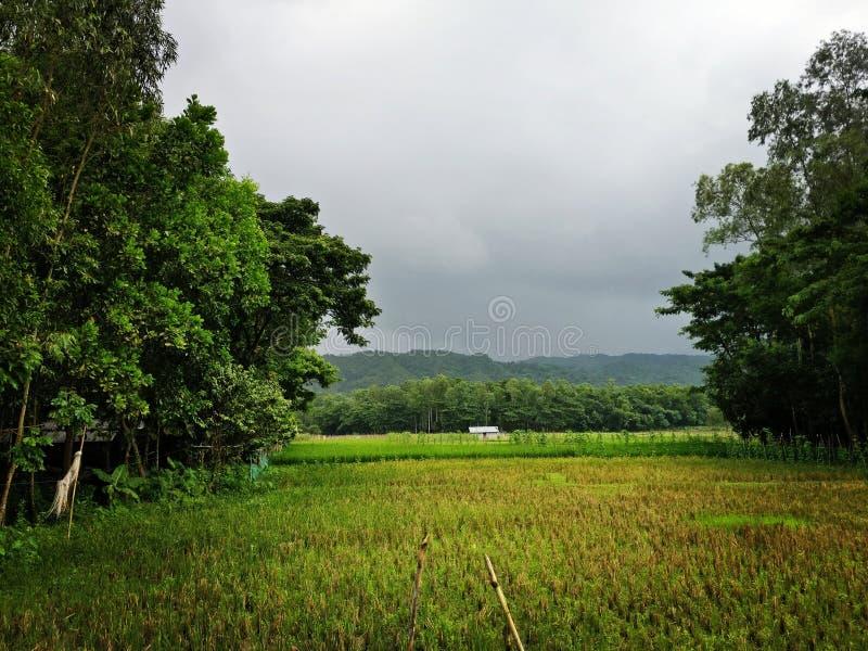 Βουνά και καταρράκτες στοκ εικόνες με δικαίωμα ελεύθερης χρήσης