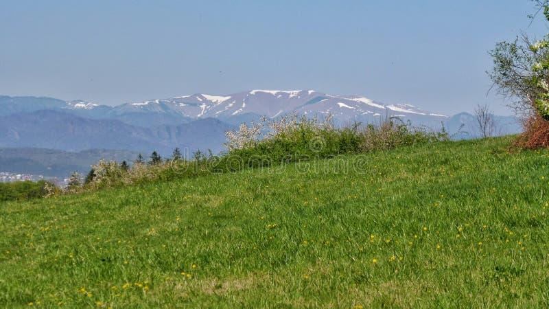 Βουνά και λιβάδια γύρω από Zvolen E στοκ φωτογραφίες