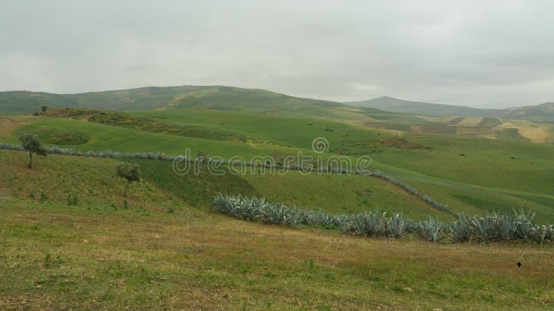 Βουνά και πόλης περιοχή fes, Μαρόκο στοκ εικόνα