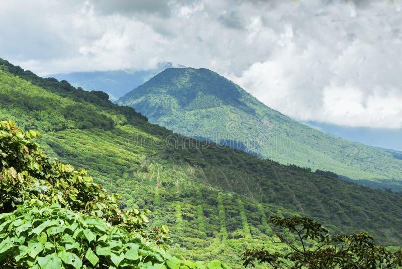 Βουνά καφέ στοκ φωτογραφίες