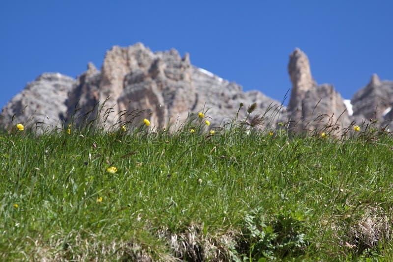 Βουνά λιβαδιών στοκ εικόνα