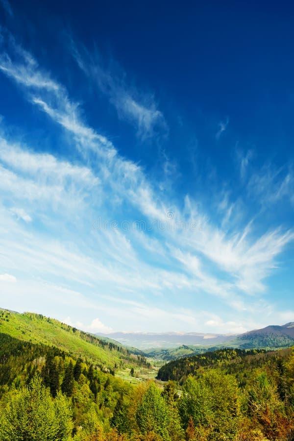 Βουνά με το πράσινο δασικό τοπίο στοκ φωτογραφία