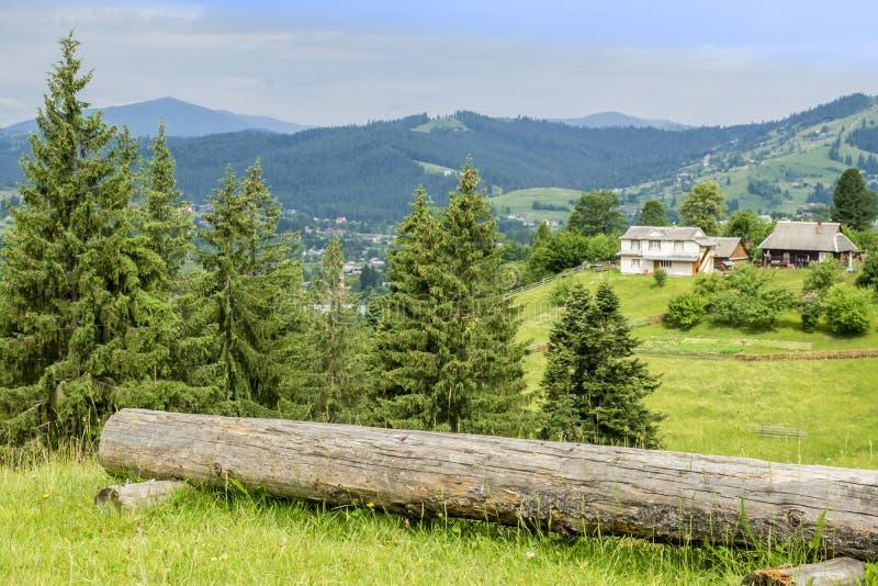 Βουνά που καλύπτονται με το δάσος και μια μεγάλη σύνδεση ένα καθάρισμα πλησίον στοκ εικόνα με δικαίωμα ελεύθερης χρήσης