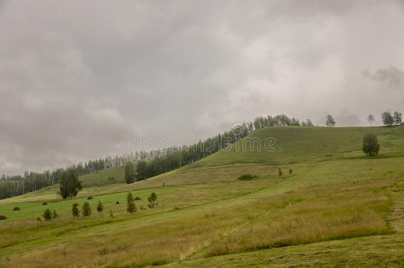 Βουνά Πράσινος τομέας με τις αποχρώσεις κίτρινου με τις θυμωνιές χόρτου και τα δέντρα μακριά Καλοκαίρι, Αύγουστος στοκ φωτογραφία