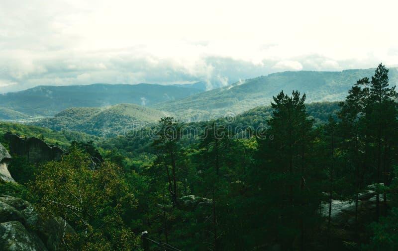 Βουνά - πράσινο φίλτρο - Carpathians στοκ εικόνες