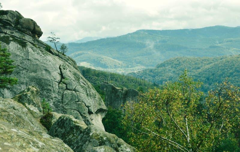 Βουνά - πράσινο φίλτρο - Carpathians στοκ εικόνες με δικαίωμα ελεύθερης χρήσης