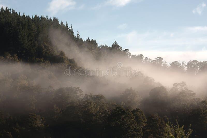 Βουνά στην υδρονέφωση στοκ φωτογραφία με δικαίωμα ελεύθερης χρήσης