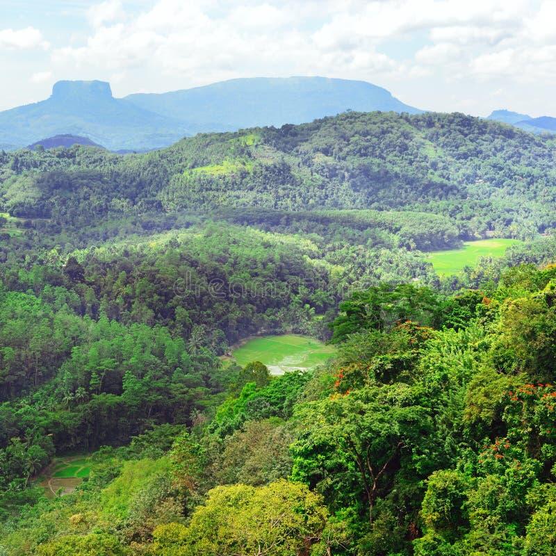 Βουνά στο νησί της Σρι Λάνκα στοκ εικόνα με δικαίωμα ελεύθερης χρήσης